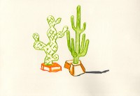 http://nadiaraviscioni.com/files/gimgs/th-29_Cactus-in-Love-web2.jpg